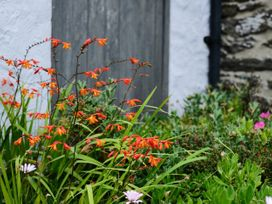 Lavender Barn - Cornwall - 1064981 - thumbnail photo 17