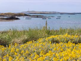 Twyni Mawr - Anglesey - 1065839 - thumbnail photo 30