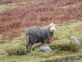 The Heights - Lake District - 1065898 - thumbnail photo 28