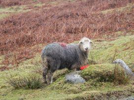 Ramblers' Rest Lodge - Lake District - 1068905 - thumbnail photo 19