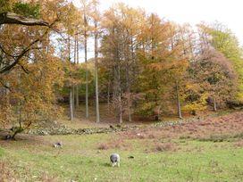 The Oaks 2 - Lake District - 1069062 - thumbnail photo 37