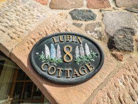 Lupin Cottage - Northumberland - 1070414 - thumbnail photo 3