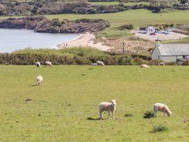 Bryn Hyfryd Caravan - Anglesey - 1070894 - thumbnail photo 19