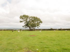 16 Cefn Cwmwd Cottages - Anglesey - 1070900 - thumbnail photo 24