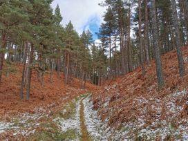 Redburn Steading - Scottish Highlands - 1071111 - thumbnail photo 44