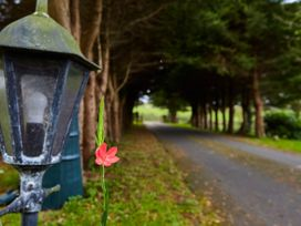 Mount Brandon Cottage 1 - East Ireland - 1071614 - thumbnail photo 15