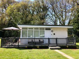 Woodland Brook - Mid Wales - 1072262 - thumbnail photo 1