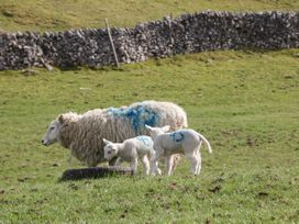 Shepherds Retreat - Peak District - 1073051 - thumbnail photo 18