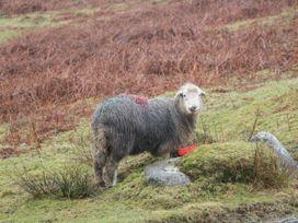 Ehenside - Lake District - 1073350 - thumbnail photo 16