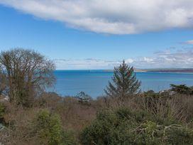 White Water - Cornwall - 1073862 - thumbnail photo 8