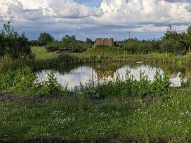 Snuffling Hedgehog - Lincolnshire - 1074739 - thumbnail photo 26