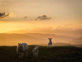Tan - Lake District - 1075180 - thumbnail photo 13
