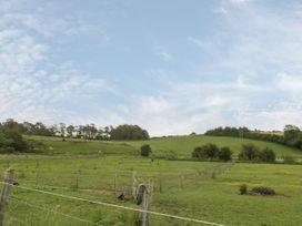 Egdon Heath - Dorset - 1076565 - thumbnail photo 26