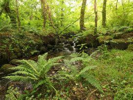 Trewrach Cottage - South Wales - 1076953 - thumbnail photo 26