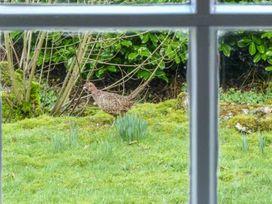 2 Dalegarth - Yorkshire Dales - 1077199 - thumbnail photo 14