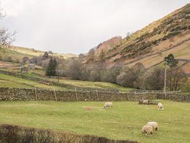Kearton Shunner Fell - Yorkshire Dales - 1077636 - thumbnail photo 13