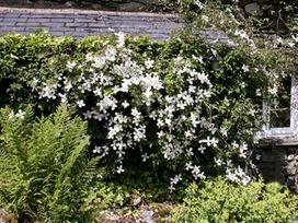 Green Bank - Lake District - 1077880 - thumbnail photo 14