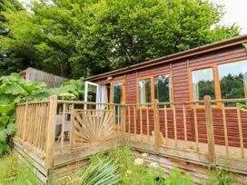 Tye Lodge - Cornwall - 1078543 - thumbnail photo 11