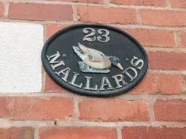 Mallards - Devon - 1078701 - thumbnail photo 3
