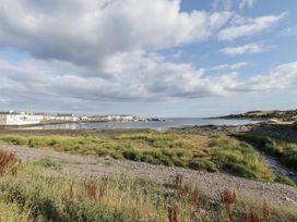 Oystercatcher - Scottish Lowlands - 1079230 - thumbnail photo 19