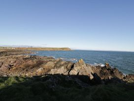 Oystercatcher - Scottish Lowlands - 1079230 - thumbnail photo 23