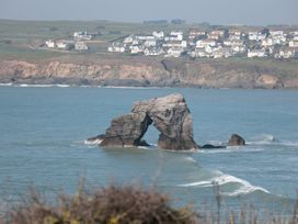 Sea Campion - Devon - 1079396 - thumbnail photo 26