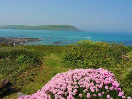 Thalassa - Cornwall - 1080185 - thumbnail photo 10