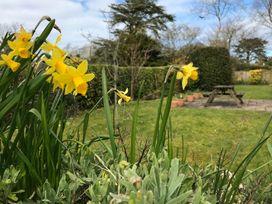 Sunnynook - Cornwall - 1080252 - thumbnail photo 26