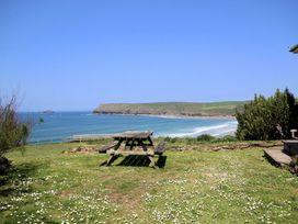 Gullsway: Kittiwake - Cornwall - 1080270 - thumbnail photo 3