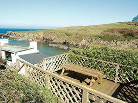 Rockies - Cornwall - 1080361 - thumbnail photo 21