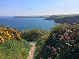 Seawynds - Cornwall - 1080657 - thumbnail photo 34
