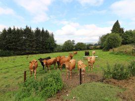 Toberlonagh - County Wicklow - 1080963 - thumbnail photo 21