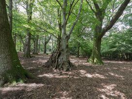 Oak - Cotswolds - 1081263 - thumbnail photo 12