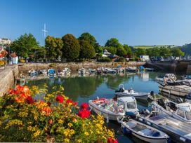 Ferry View - Devon - 1082418 - thumbnail photo 20