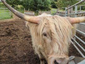The Granary - Northumberland - 1082473 - thumbnail photo 19