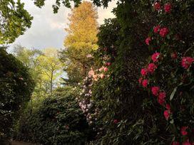 Surrey Hills Cottage - Kent & Sussex - 1082989 - thumbnail photo 18