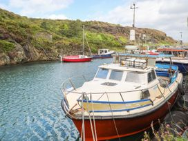 Ser a Mor (Stars and Sea) - Anglesey - 1085926 - thumbnail photo 33