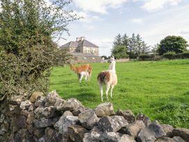 The Lazy Llama - County Donegal - 1085933 - thumbnail photo 11
