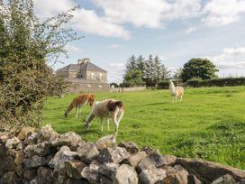 The Lazy Llama - County Donegal - 1085933 - thumbnail photo 12