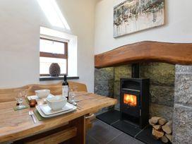 Barn Owl - Anglesey - 1087409 - thumbnail photo 14