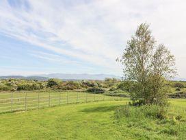 Barn Owl - Anglesey - 1087409 - thumbnail photo 24