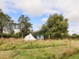 Bluebell - Herefordshire - 1087699 - thumbnail photo 13