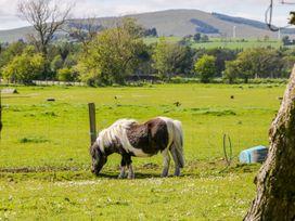 Gateside Farm Cottage - Scottish Lowlands - 11369 - thumbnail photo 18