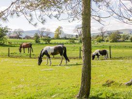 Gateside Farm Cottage - Scottish Lowlands - 11369 - thumbnail photo 19