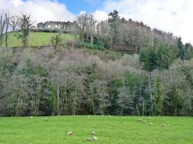 5 Bodmin Hill - Cornwall - 11626 - thumbnail photo 12