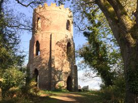 Little Dragons - Somerset & Wiltshire - 11686 - thumbnail photo 15