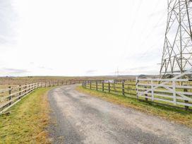Goldfinch - Northumberland - 11690 - thumbnail photo 16