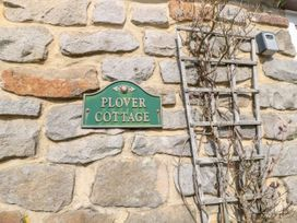Plover - Northumberland - 11914 - thumbnail photo 2