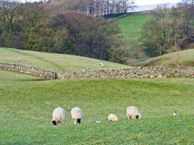 Greengates Farm - Yorkshire Dales - 12171 - thumbnail photo 11