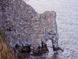 Duck Cottage - Whitby & North Yorkshire - 12291 - thumbnail photo 10
